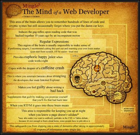 Cerebro desarollador web
